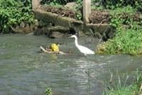 05-biodiversita.jpg