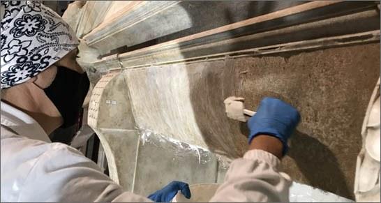 Art: ENEA scientists unleash bacteria to clean Michelangelo's marbles