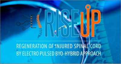 Health: regenerative therapy for spinal cord injuries