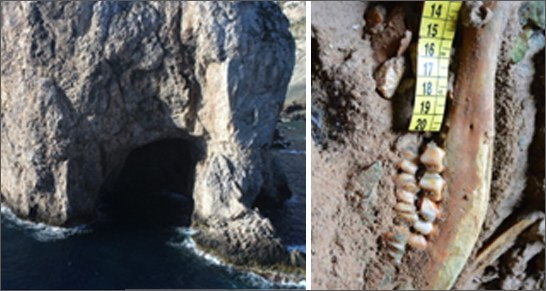Sea: Mediterranean, finds at Egadi area date back the history of navigation 2000 years earlier