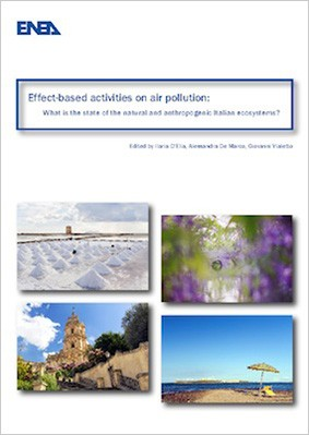 Effect-based activities on air pollution: what is the state of the natural and anthropogenic Italian ecosystems?