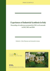 Experiences of Industrial Symbiosis in Italy