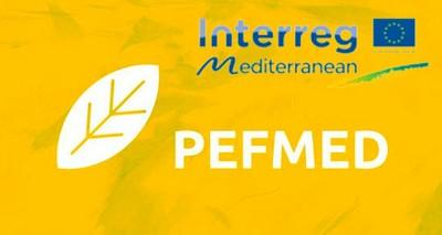 Agroalimentare: da ENEA e Federalimentare nuovi strumenti  per ridurre l'impronta ambientale delle filiere