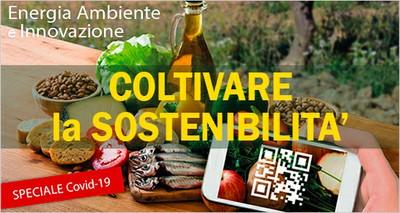 """Coronavirus: """"Agroalimentare-cibo-malattie infettive"""", online lo speciale del magazine ENEA"""