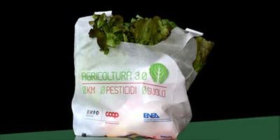 EXPO: ENEA presenta la prima Vertical Farm italiana