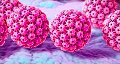 Medicina: ENEA-Policlinico Gemelli, identificata firma molecolare che predice la risposta ai trattamenti contro il tumore della cervice uterina
