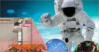 Spazio: progetto ReBUS, l'alleanza tra ricerca e industria per la vita dell'uomo su Luna e Marte