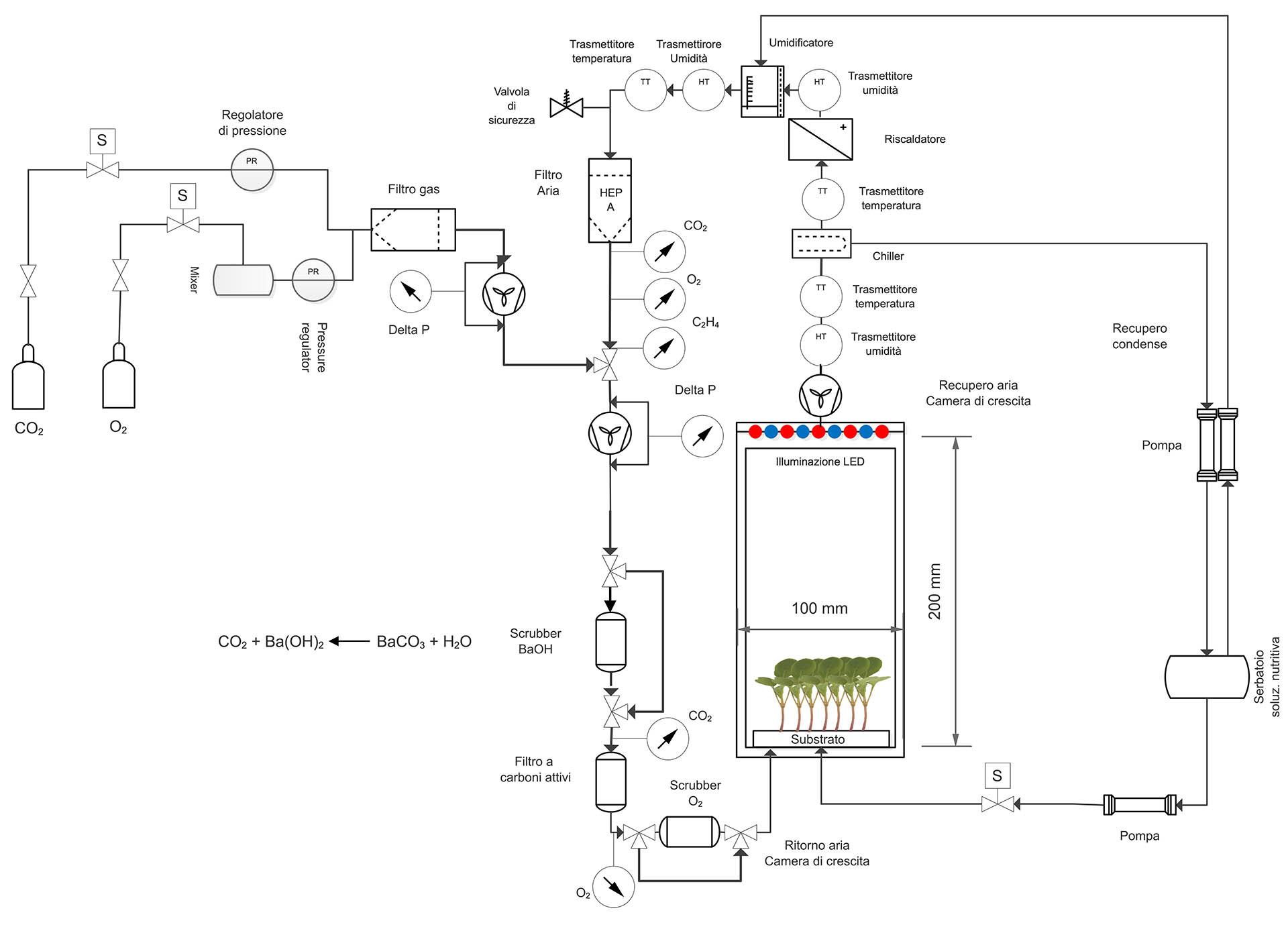 SCHEMA drawing_microgreens_greencube.jpg