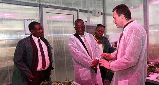 Casaccia Delegazione Botswana