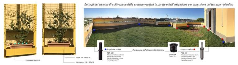 Prototipo tetto-giardino
