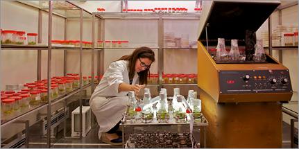 Laboratorio Biotecnologie