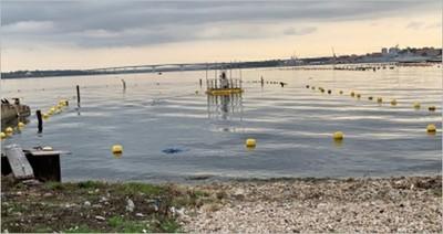 Mar Piccolo di Taranto