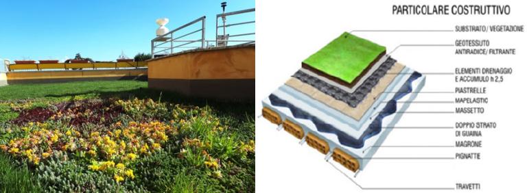 Particolare costruttivo tetti verdi