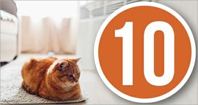 10 regole per il riscaldamento
