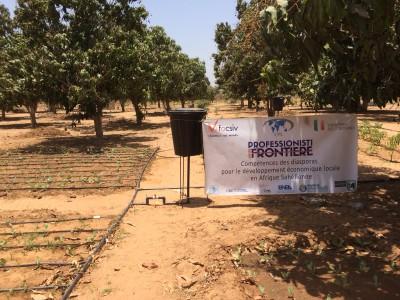 Impianto irrigazione a goccia con logo progetto