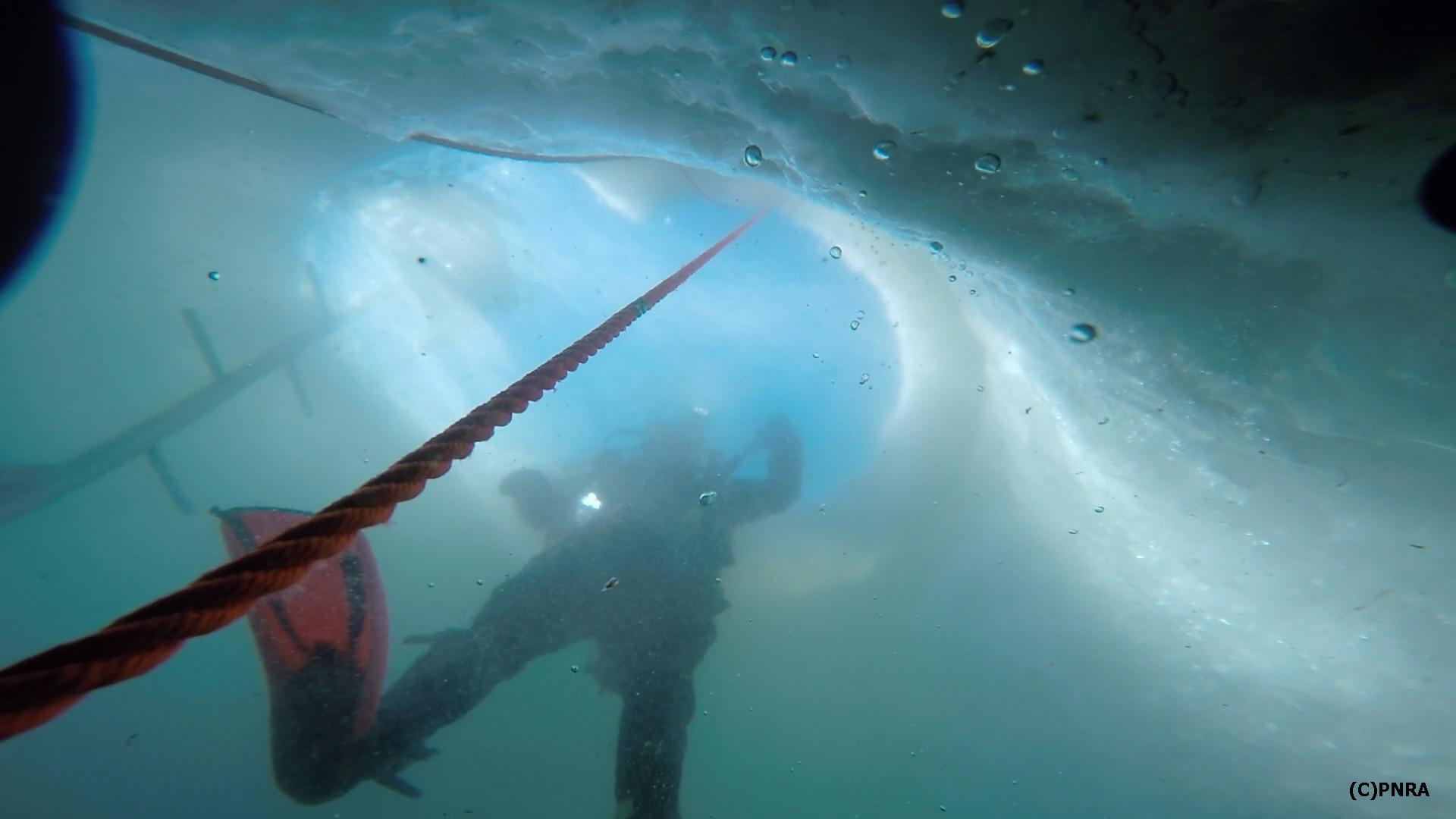 Antartide - Immersione