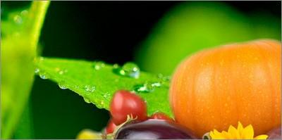 Alimentazione: al via progetto Ue per ridurre impronta ambientale dell'agroindustria