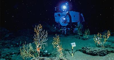 Ambiente: un'istituzione sovranazionale per esplorazioni a basso impatto nel mare profondo?