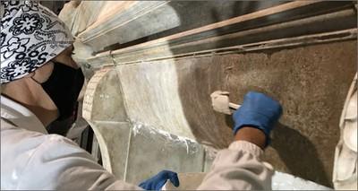 """Arte: dall'""""archivio"""" ENEA tre batteri per il restauro delle opere di Michelangelo"""