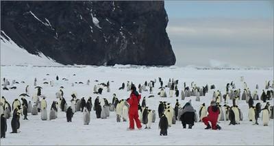 Antartide, call per giornalisti al seguito dei ricercatori