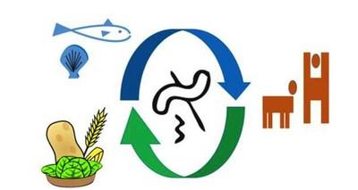 """Cibo: dai """"microbi"""" soluzioni innovative per migliorare le catene alimentari"""