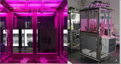 """Agroalimentare: in anteprima a Portici l'innovativa illuminazione per il """"Microcosmo"""" ENEA"""
