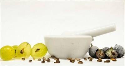 Salute: tumori, cure più efficaci con i semi dell'uva