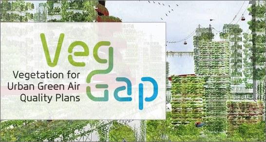 Veg Gap