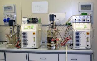 Fermentatori da banco - Hall tecnologica Agrobiopolis CR Trisaia (MT)