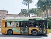 29Mybus.jpg