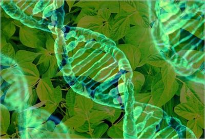 05Vaccinigenetici.jpg
