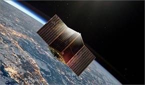 11microsatelliti.jpg