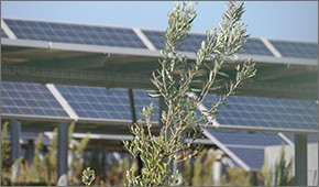 09parco-fotovoltaico.jpg