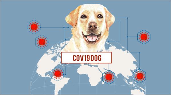 Tracciamento COVID 1
