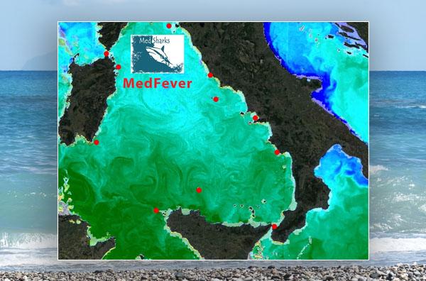Mappa Mare Tirreno
