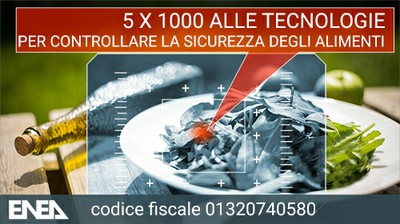 5x10002017.jpg