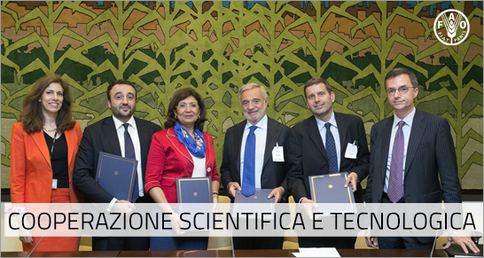 Cooperazione Scientifica