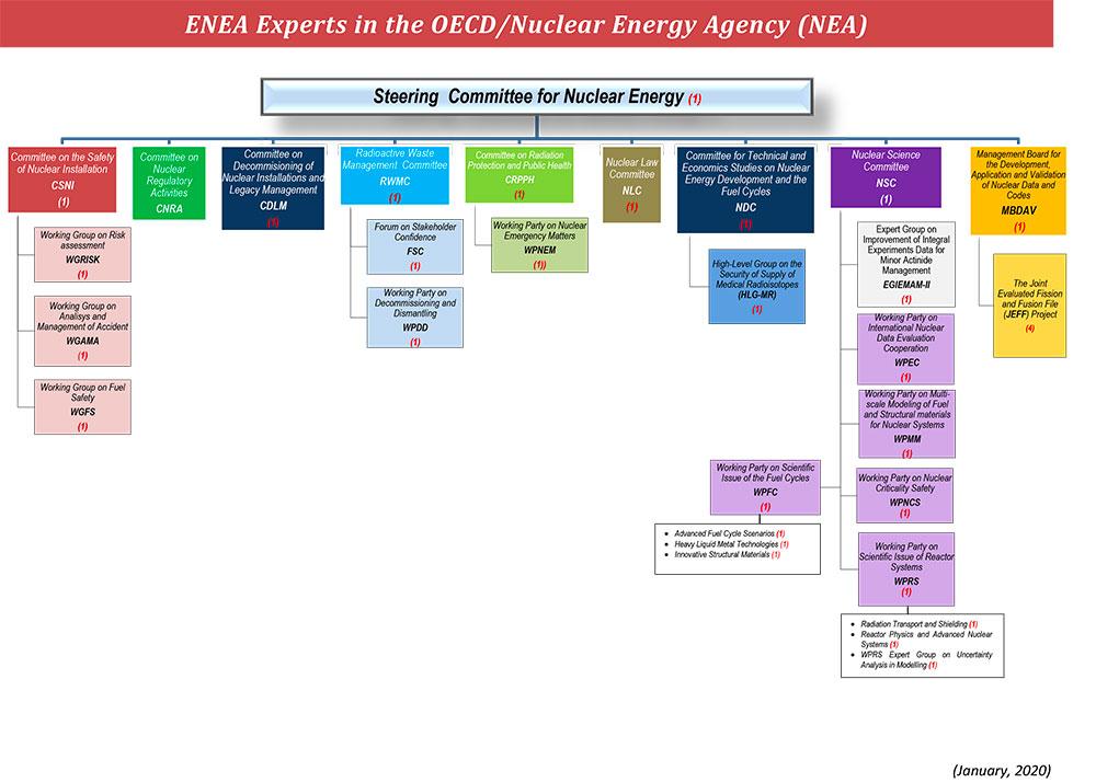 ENEA-in-OECD_NEA-2020.jpg