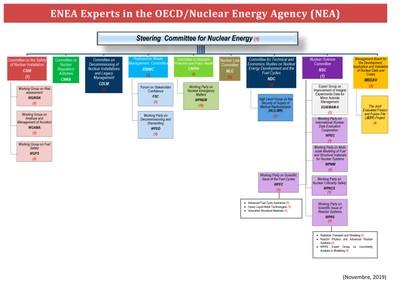 Experts-OECD-2019.jpg