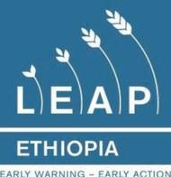012-Leap.jpg