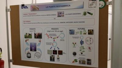 26 Laboratorio di Biofarmaceutica