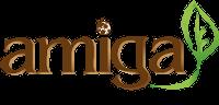 AMIGA Project | Final Event