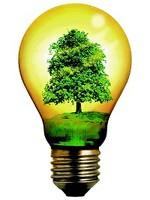 Il Sistema dei titoli di efficienza energetica. Un'importante opportunità per le imprese