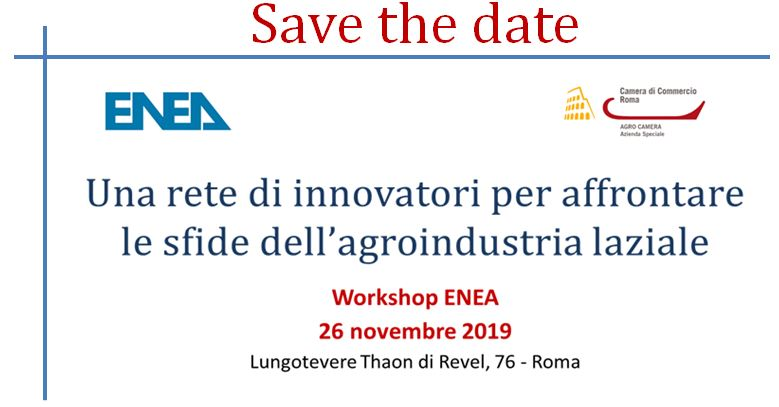 SAVE THE DATE WORKSHOP ENEA_26NOV2019.JPG