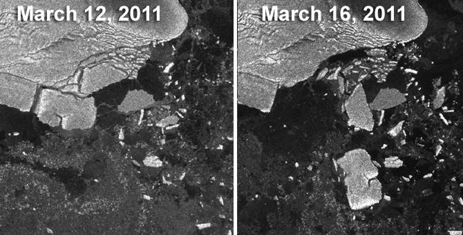 Il distacco dei due grandi iceberg e gli altri iceberg minori (12 marzo), che sono andati poi andati alla deriva (16 marzo). Immagini ESA/Envisat.