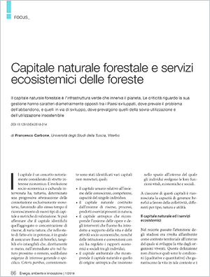 Capitale-naturale-forestale.jpg