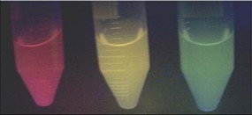 Fig. 8 - Functionalised Si-nc suspensions emitting at different colours - Source: results of the BONSAI Project nsions