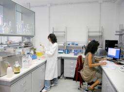 Tecniche molecolari per l'identificazione di batteri