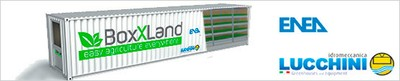 boxland.jpg